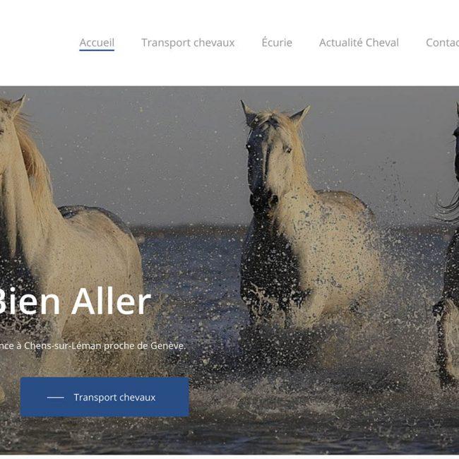 creation site internet Genève